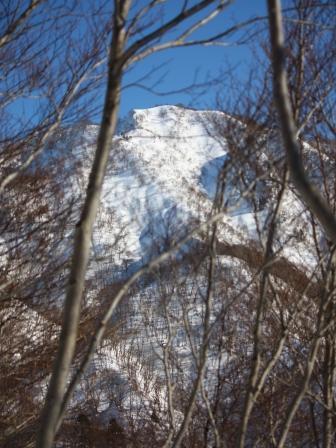 雑木林越しの松平山