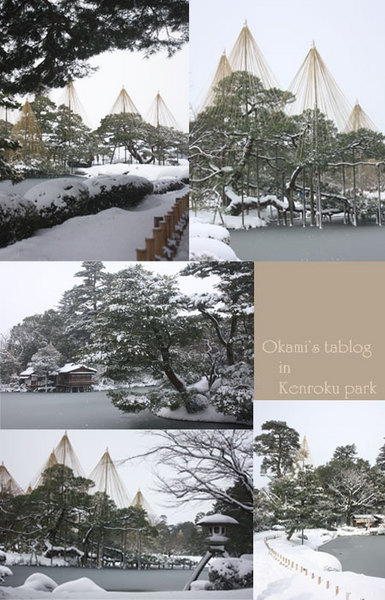 11-01-16-3.jpg